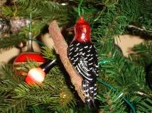 DSC00027 woodpecker Christmas tree dec Karen perkins life coach uk sheffield